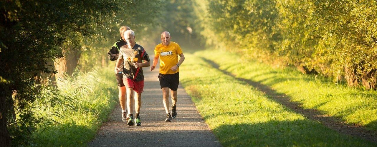 Best Treadmill for Seniors